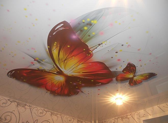 Красивый потолок с бабочками